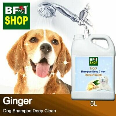 Dog Shampoo Deep Clean (DSDC-Dog) - Ginger - 5L ⭐⭐⭐⭐⭐