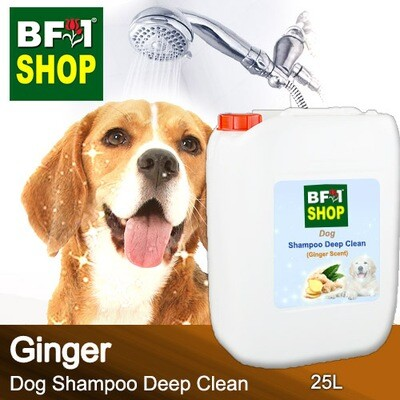 Dog Shampoo Deep Clean (DSDC-Dog) - Ginger - 25L ⭐⭐⭐⭐⭐