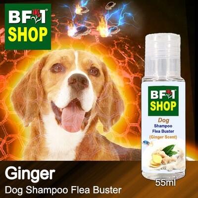 Dog Shampoo Flea Buster (DSO-Dog) - Ginger - 55ml ⭐⭐⭐⭐⭐