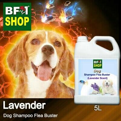 Dog Shampoo Flea Buster (DSO-Dog) - Lavender - 5L ⭐⭐⭐⭐⭐
