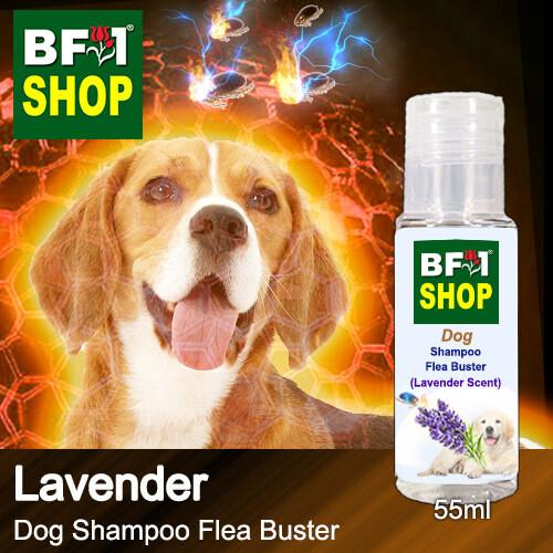 Dog Shampoo Flea Buster (DSO-Dog) - Lavender - 55ml ⭐⭐⭐⭐⭐
