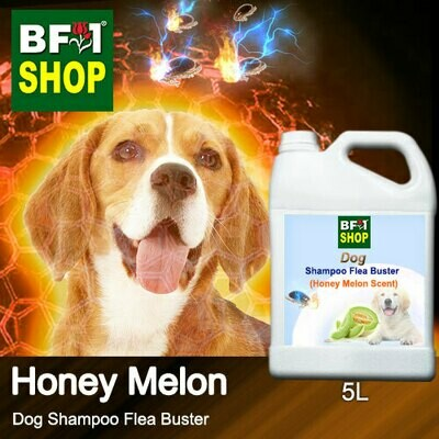 Dog Shampoo Flea Buster (DSO-Dog) - Honey Melon - 5L ⭐⭐⭐⭐⭐
