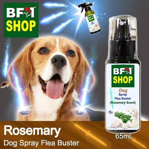 Dog Spray Flea Buster (DSY-Dog) - Rosemary - 65ml ⭐⭐⭐⭐⭐