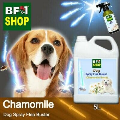 Dog Spray Flea Buster (DSY-Dog) - Chamomile - 5L ⭐⭐⭐⭐⭐