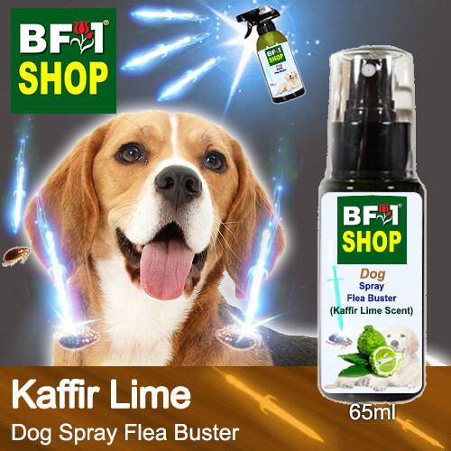 Dog Spray Flea Buster (DSY-Dog) - lime - Kaffir Lime - 65ml ⭐⭐⭐⭐⭐