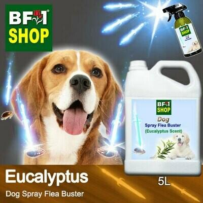 Dog Spray Flea Buster (DSY-Dog) - Eucalyptus - 5L ⭐⭐⭐⭐⭐