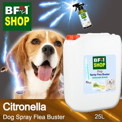 Dog Spray Flea Buster (DSY-Dog) - Citronella - 25L ⭐⭐⭐⭐⭐