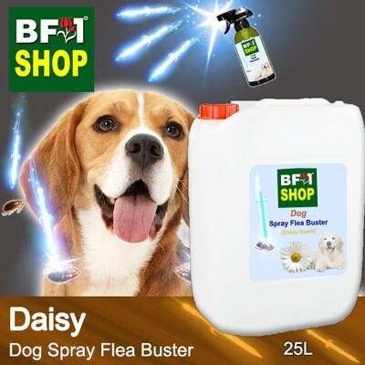Dog Spray Flea Buster (DSY-Dog) - Daisy - 25L ⭐⭐⭐⭐⭐