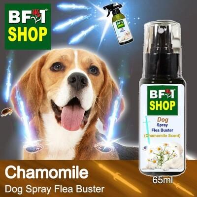 Dog Spray Flea Buster (DSY-Dog) - Chamomile - 65ml ⭐⭐⭐⭐⭐