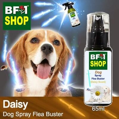 Dog Spray Flea Buster (DSY-Dog) - Daisy - 65ml ⭐⭐⭐⭐⭐