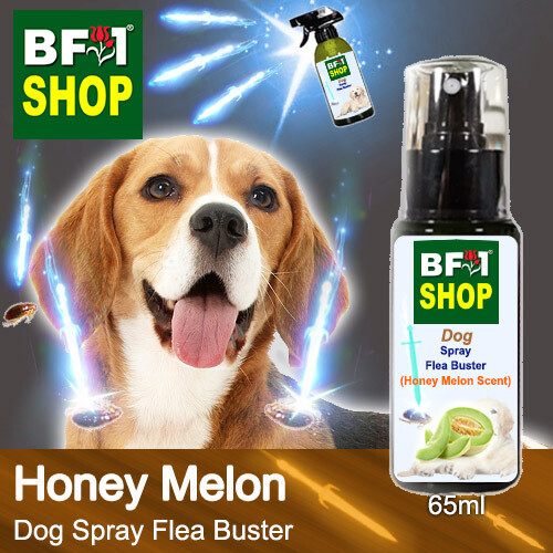 Dog Spray Flea Buster (DSY-Dog) - Honey Melon - 65ml ⭐⭐⭐⭐⭐