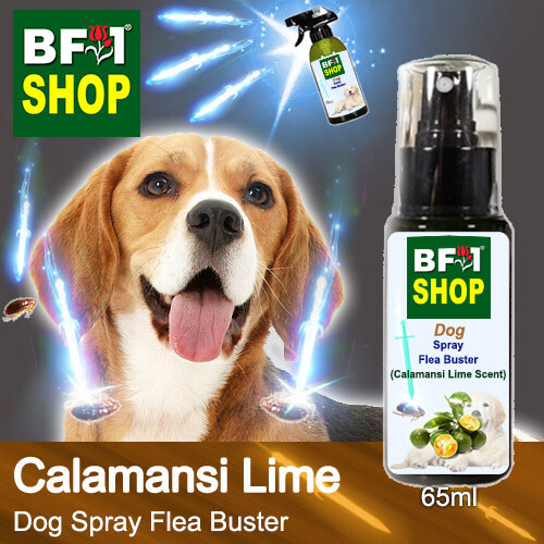 Dog Spray Flea Buster (DSY-Dog) - lime - Calamansi Lime - 65ml ⭐⭐⭐⭐⭐