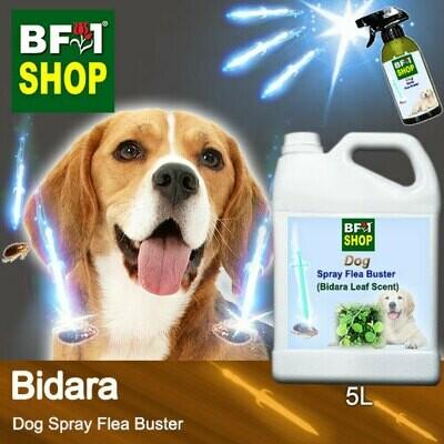 Dog Spray Flea Buster (DSY-Dog) - Bidara - 5L ⭐⭐⭐⭐⭐