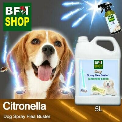 Dog Spray Flea Buster (DSY-Dog) - Citronella - 5L ⭐⭐⭐⭐⭐