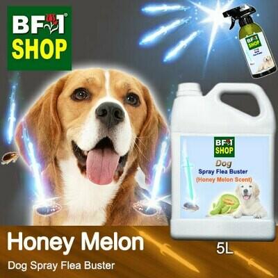 Dog Spray Flea Buster (DSY-Dog) - Honey Melon - 5L ⭐⭐⭐⭐⭐