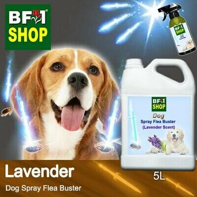Dog Spray Flea Buster (DSY-Dog) - Lavender - 5L ⭐⭐⭐⭐⭐
