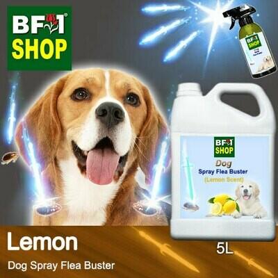 Dog Spray Flea Buster (DSY-Dog) - Lemon - 5L ⭐⭐⭐⭐⭐