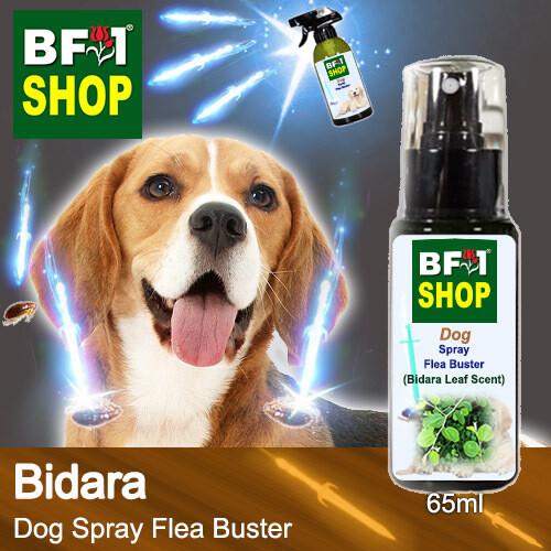 Dog Spray Flea Buster (DSY-Dog) - Bidara - 65ml ⭐⭐⭐⭐⭐