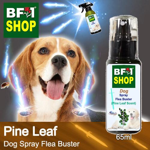 Dog Spray Flea Buster (DSY-Dog) - Pine Leaf - 65ml ⭐⭐⭐⭐⭐