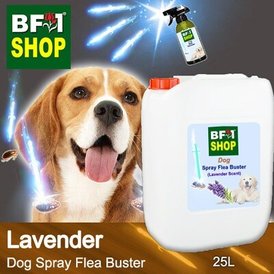 Dog Spray Flea Buster (DSY-Dog) - Lavender - 25L ⭐⭐⭐⭐⭐