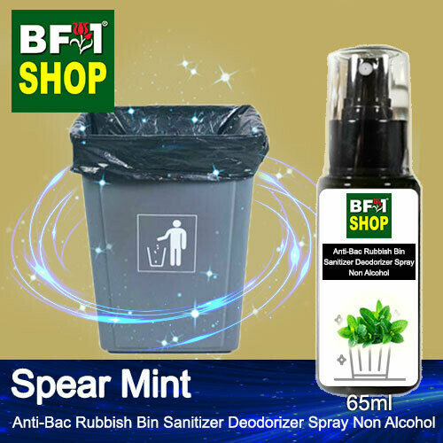 (ABRBSD) mint - Spear Mint Anti-Bac Rubbish Bin Sanitizer Deodorizer Spray - Non Alcohol - 65ml