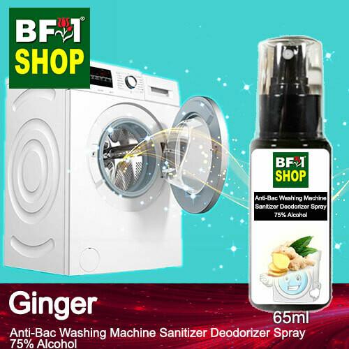 (ABWMSD) Ginger Anti-Bac Washing Machine Sanitizer Deodorizer Spray - 75% Alcohol - 65ml