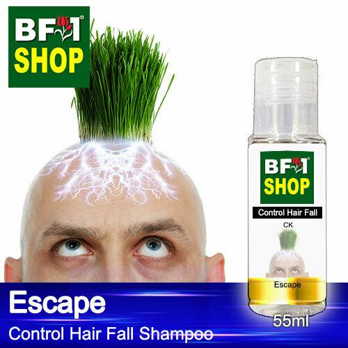 (CHFS) AmBCK - Escape Control Hair Fall Shampoo - 55ml - Man