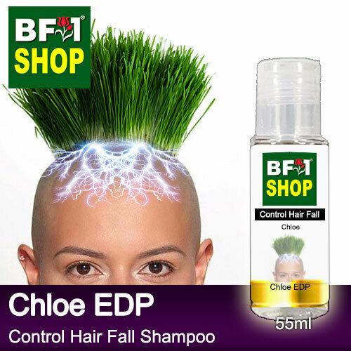 (CHFS) AmBChloe - Chloe EDP Control Hair Fall Shampoo - 55ml Woman