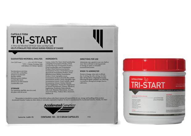Tri-Start Bolus (Cow Care - Feed Additives)