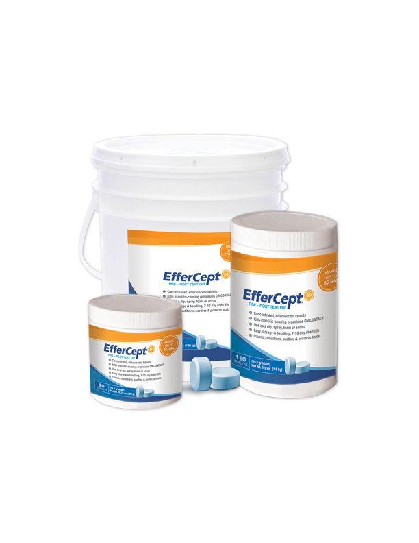 EfferCept® SG - 550 Count