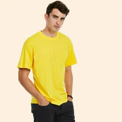 Classic Workwear T-shirt (Unisex 301)