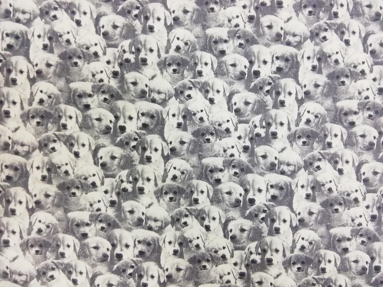 Puuvillakangas Koirat