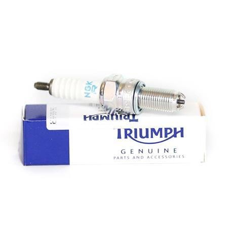 Triumph NGK Spark Plug