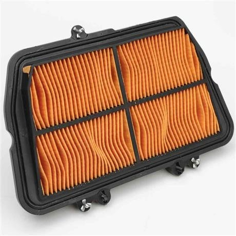 Triumph Tiger 800 Air Filter