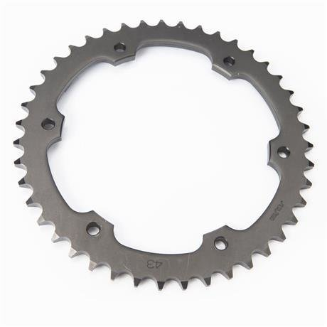 Triumph Speed Triple 43 Tooth Rear Sprocket