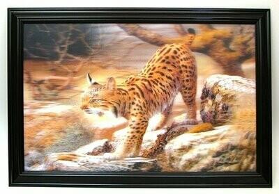 Bobcat 3-D picture REDUCED