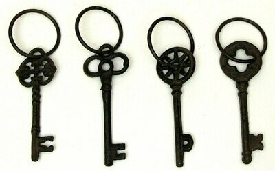 Single Key on Ring Set of 4