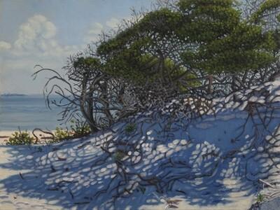Morning Shadow, Horn Island by Marc Rouillard