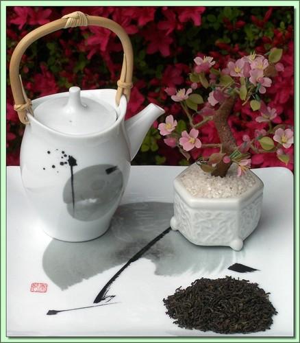 Organic Jasmine Gold (China) - 20 Tea Bags