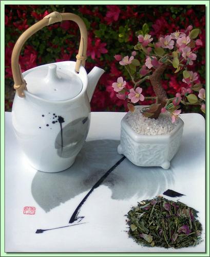Organic Kyoto Cherry (China) - 20 Tea Bags