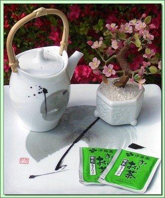 Ohiocha Sencha (Japan) - 20 Tea Bags
