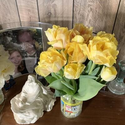 "Pre-sale Tulip Bulbs (10) ""Yellow Pomponette"""