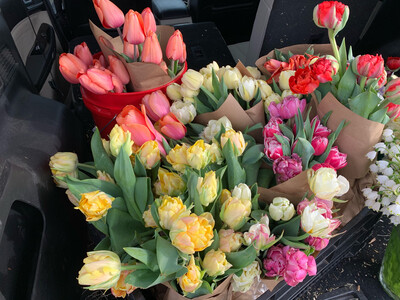 Buy One Tulip Bouquet For $28.95, Get One For $15!
