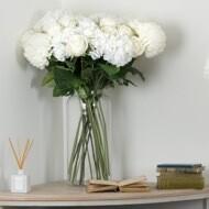 Apothecary - Large Vase