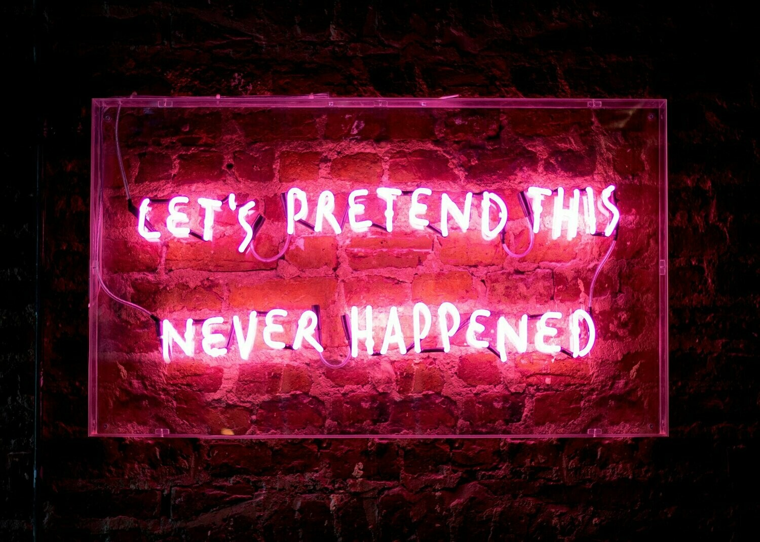 Let's Pretend This Never Happened - Canvas Wall Art