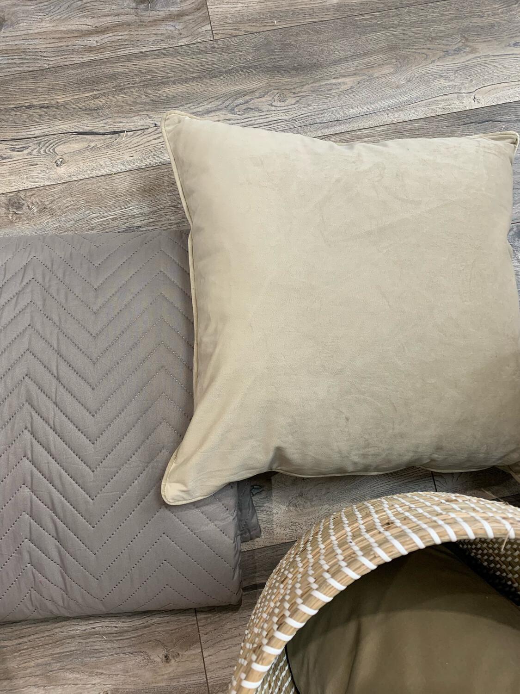 Champagne / Taupe Cushion
