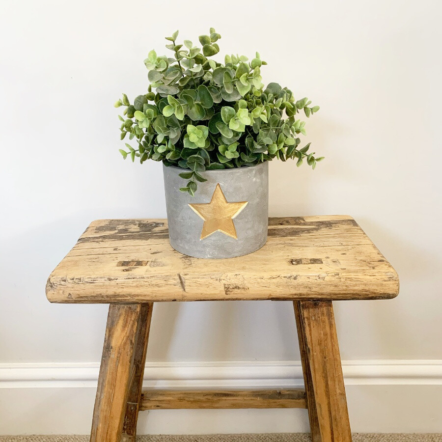 Gold Star Cement Planter