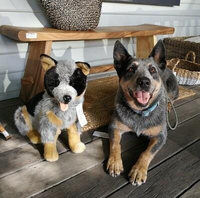 Plush Toy Dog