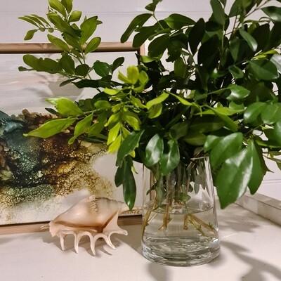 Alva Glass Vase