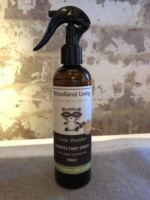 Disinfect Spray - Little Raider 250ml (70% ethanol)